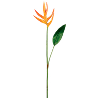 32 Inch Mini Heliconia Spray x1