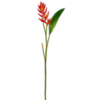 33 Inch Mini Heliconia Spray x1