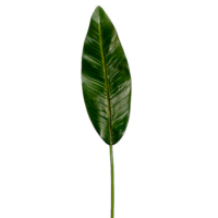37 Inch Bird of Paradise Leaf Spray