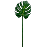 29 Inch Monstera Leaf