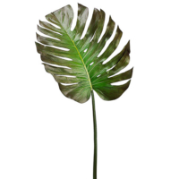 55 Inch Monstera Leaf