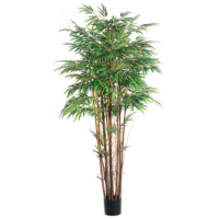 5 Foot Natural Trunk Bamboo Tree x12 with 1840 Leaves in Pot