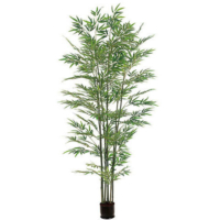 6 Foot Bamboo Tree x7 with 1680 Leaves in Pot