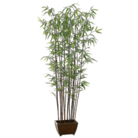 72 Inch Bamboo Wall Tree x19 with 1276 Leaves in Wood Container