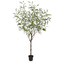 70 Inch Bamboo Tree in Plastic Pot