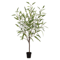 48 Inch Bamboo Tree in Plastic Pot