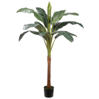 72 Inch Banana Tree With 13 Leaves in Pot
