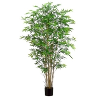 6 Foot Bamboo Tree w/550 Leaves in Pot