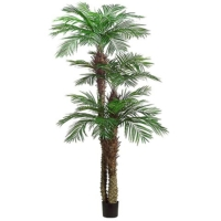 9 Foot + 7 Foot + 5 Foot Tropical Areca Palm Tree x3 with 1364 Leaves in Plastic Pot