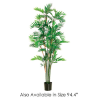 7.8 Foot Parlour Palm Tree x15 w/1470 Leaves in Pot