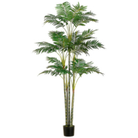 6 Foot Areca Palm Tree x26 in Plastic Pot