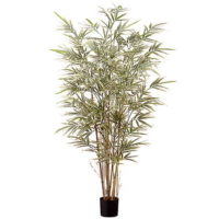 4 Foot Bamboo Tree x7 in Pot with 960 Leaves
