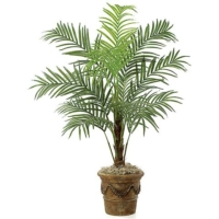 7 Foot Areca Palm Tree