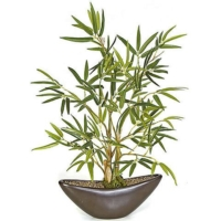 15 Inch Potted Bamboo Plant in Brown Pot