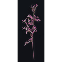 25.5 Inch Bamboo Branch Purple (Sold by Dozen)