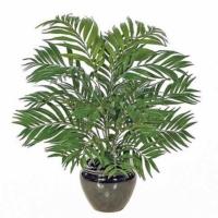 30 Inch IFR Areca Palm Bush