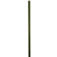 60 Inch Bamboo Stick