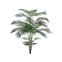 7 Foot Tropical Areca Palm x5 with 861 Leaves