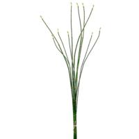 37 Inch Oriental Bamboo Bundle x10