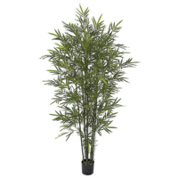 5 Foot Bamboo Palm Tree with Green Canes