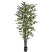 7 Foot Bamboo Palm Tree with Black Canes