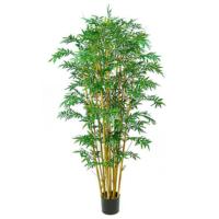 7 Foot Royal Bamboo Tree