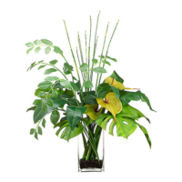 38 Inch H x 33 Inch W x 24 Inch L Anthurium/Bird of Paradise Leaf/Solomon's Seal in Glass Vase