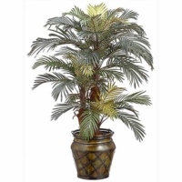 4' Phoenix Palm in Metal Container
