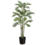 6 Foot Areca Palm in Bamboo Container