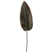 """40"""" Tropical Canna Leaf Spray Orange"""