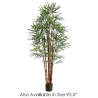 7.7 Foot Rhapis Palm Tree x19 w/1655 Leaves in Pot