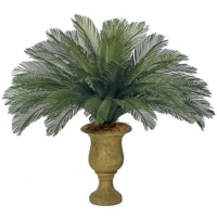 44 Inch Outdoor UV Protected Polyblend Cycas Palm, 36 Fronds