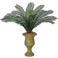 44 InchOutdoor UV Protected Polyblend Cycas Palm, 18 Fronds