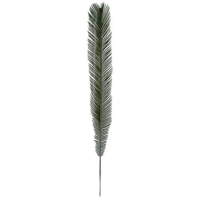48 Inch Cycas Palm Branch (Sold by Dozen)
