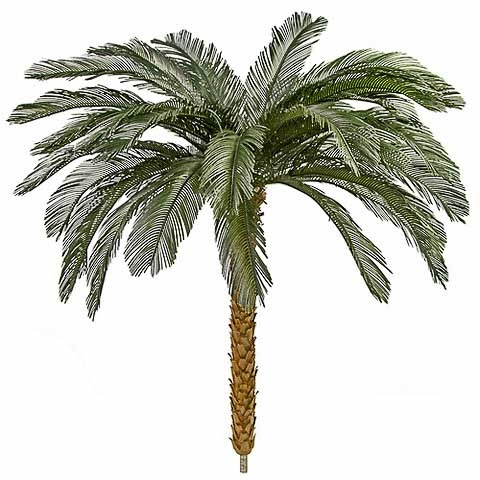7.5 Foot x 68 Inch Outdoor UV Protected Polyblend Cycas Palm Tree