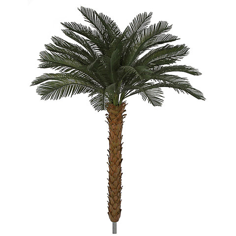 8.5 Foot x 68 Inch Outdoor UV Protected Polyblend Cycas Palm Tree