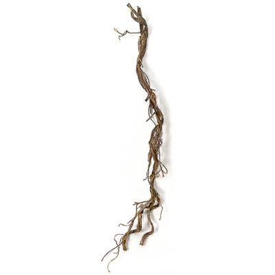 5.5 Foot Plastic Artificial Twisted Twig Vine