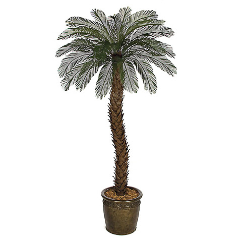 5 Foot Outdoor UV Protected Polyblend Cycas Palm Tree, 36 Fronds