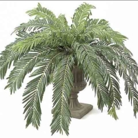 60 Inch Width Artificial Cycas Palm Cluster