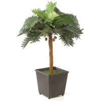 25 Inch Mini Coconut Palm Tree with Coconuts in Tin Planter