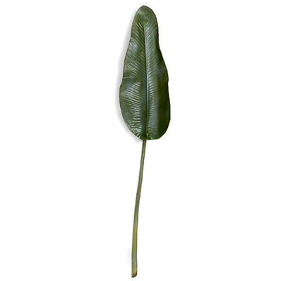 50 Inch Weathered Bird of Paradise Leaf
