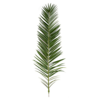 75 Inch IFR Phoenix Palm Frond - Dark Green