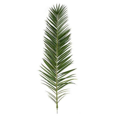 75 Inch IFR Phoenix Palm Frond - Dark Green