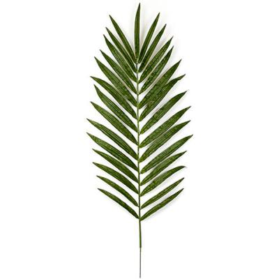 56 Inch Kentia Palm Branch (Sold Per Piece)