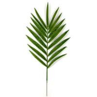 42 Inch Kentia Palm Branch (Sold per piece)