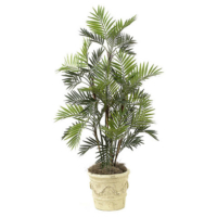 5 Foot Parlour Palm Tree