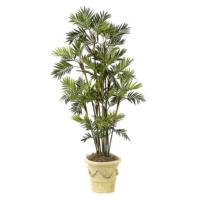 7 Foot Parlour Palm Tree